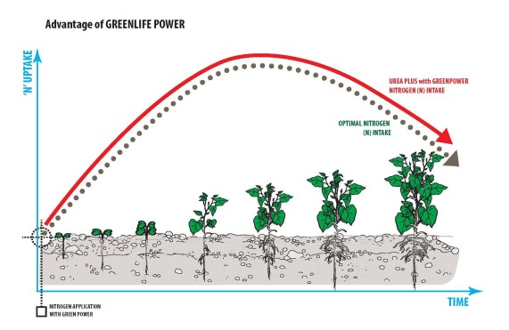 GreenLife Power Optimal Nitrogen Intake